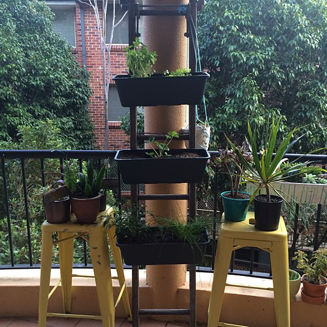 DIY Ladder Plant Herb Stand