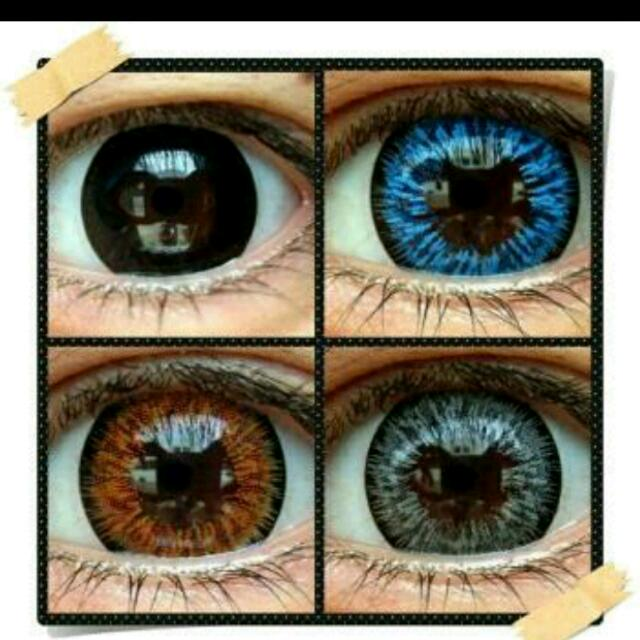 Blue WIKIPRICE Source Softlens New Clover Soft Lens Clover New Kemenkes Brown Updated .