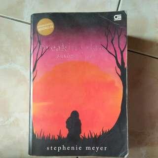 Novel Breaking Dawn *reprice