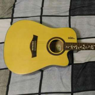 ROSEN R230 電木吉他