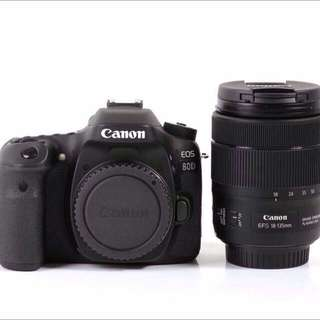 Canon 80D + 18-135mm F/3.5-5.6 IS USM LENS