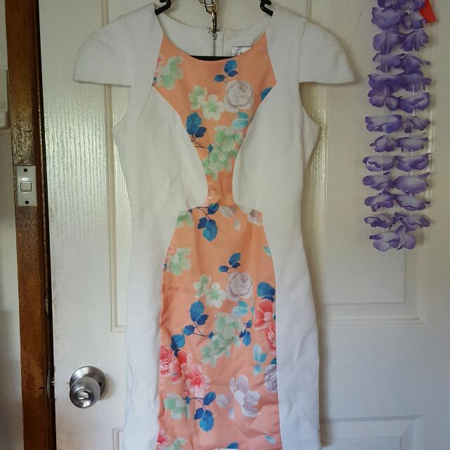 Angel Biba Size 8 Dress
