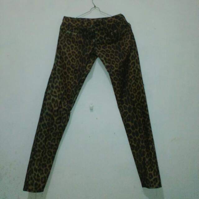 Leopard Pant Size 27