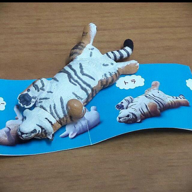 Zoo休眠動物 老虎 扭蛋  轉蛋