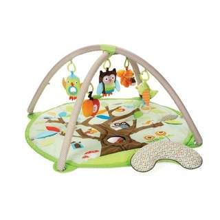 Skip Hop Activity Play Gym