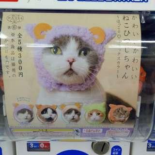 貓頭套 日本代扭