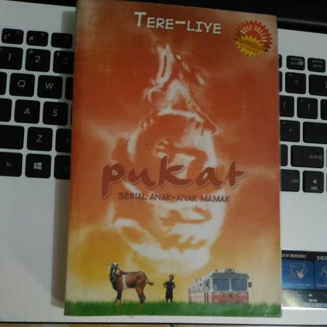 Novel PUKAT - Tere Liye