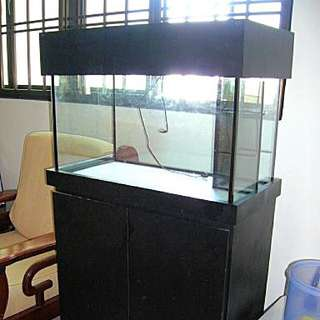Marine Fish Tank Set + Sunk Tank Filtration System For Quick Sale