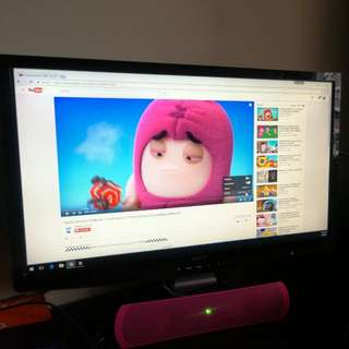24 inch ACER P244w Monitor.