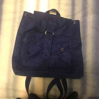 Casual Blue Bag