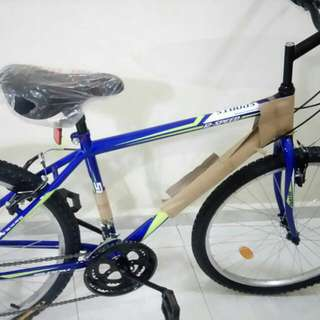 Mountain Sports Pro Bicycle 12 Speed