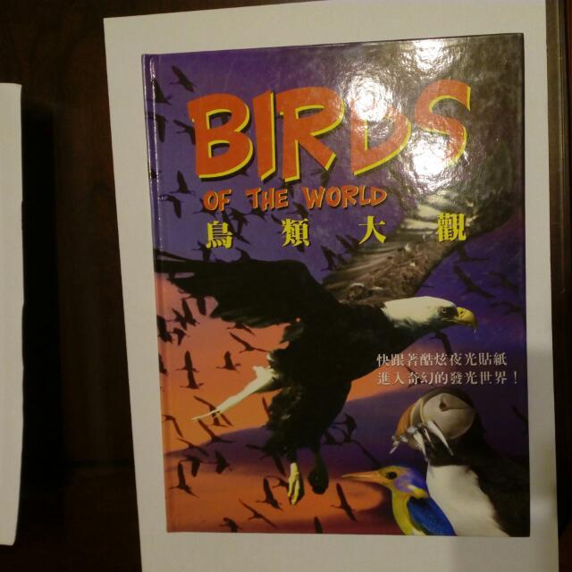 鳥類大觀 艾閣萌