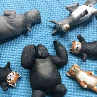 睡眠動物 犀牛 小熊貓