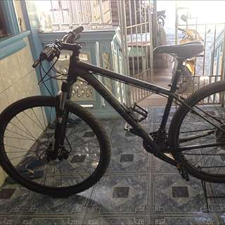 Cannondale 29ers