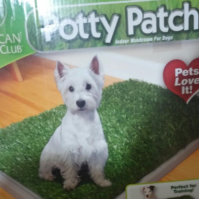 Potty Patch