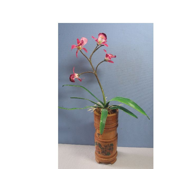Bamboo Vase For Ikebana Flower Arrangement With Landscape Motif Unused Gardening On Carousell