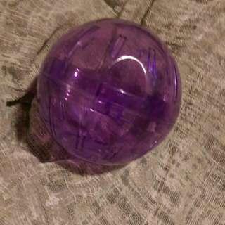 Rodent Ball