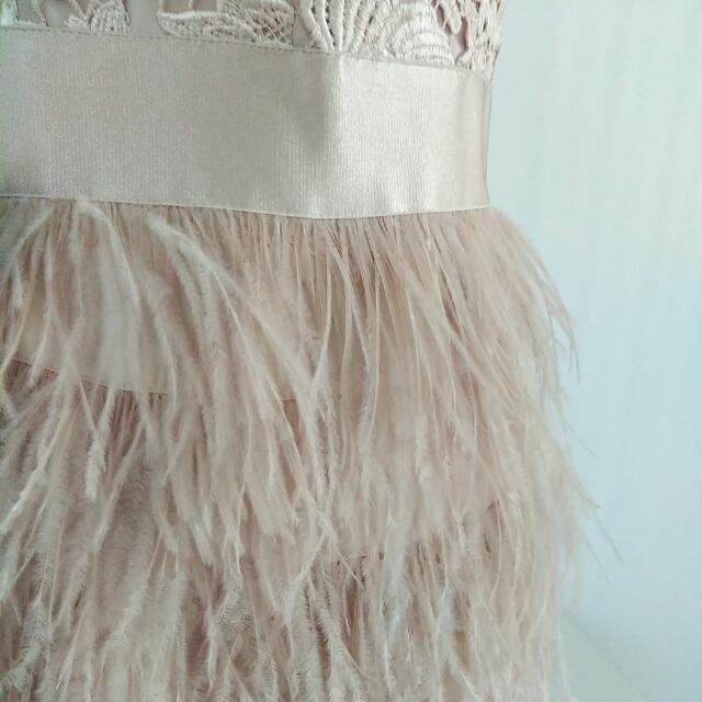 NWT Bebe Lace And Feather Bustier Dress (With Strap Add-on!!)