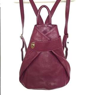Danier Leather Backpack