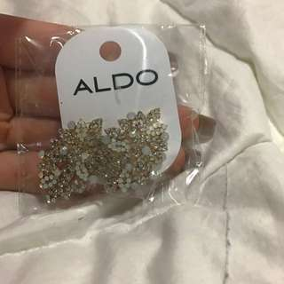 Brand New Aldo Earrings