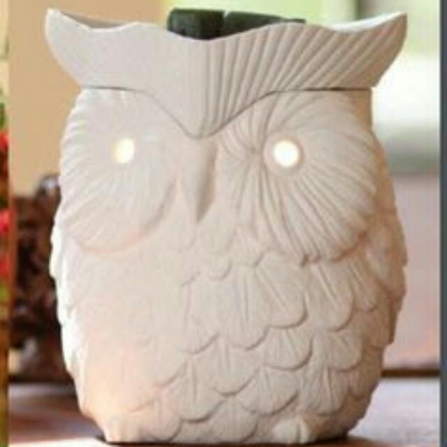 Scentsy Owl Hoot Warmer