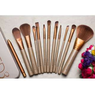 naked 3 professional 12pcs brush set