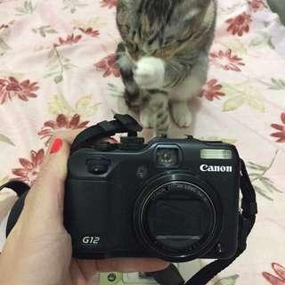 Canon G12 類單眼