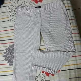 MNG SUIT夏季七分褲
