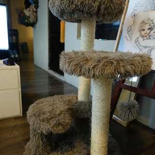全新貓跳台家貓不用半價找有緣人自取