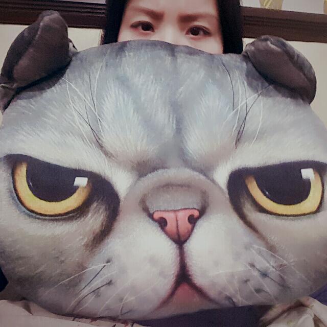 貓咪大頭抱枕