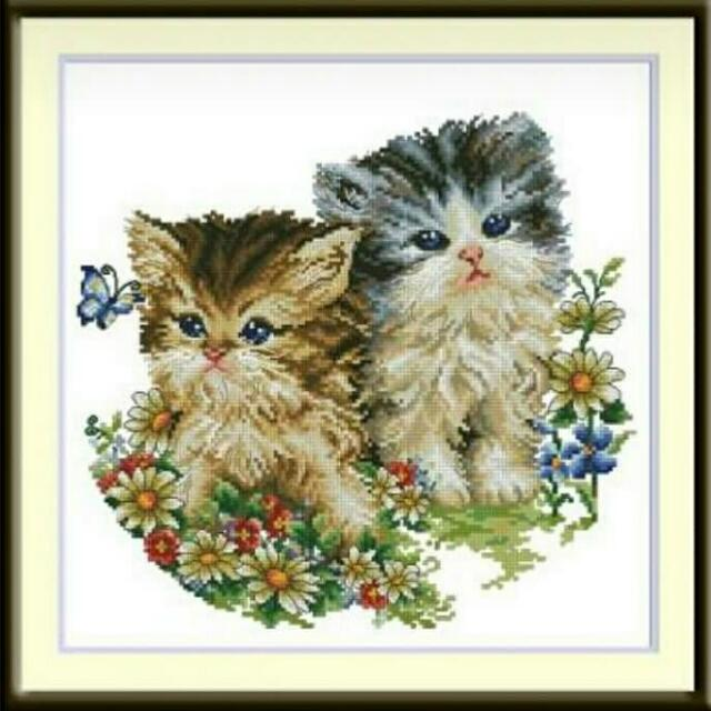 Paket Kristik Cats