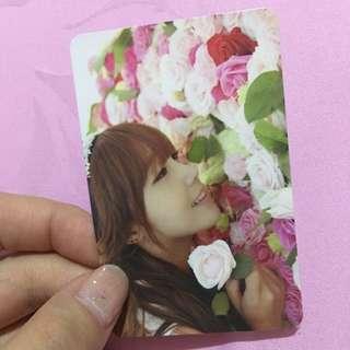 eunji a pink secret garden photocard