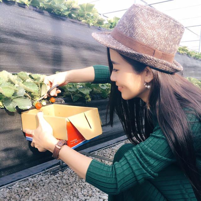 美女手做純天然草莓果醬