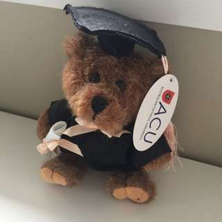 ACU Teddy Bear (Graduation)