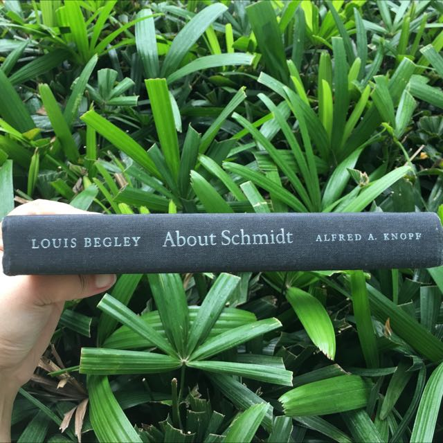 About Schmidt by Louis Begley