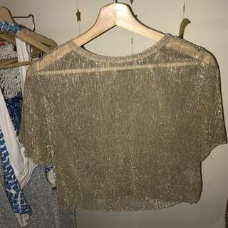 Sheer Gold And Silver Sparkly Top
