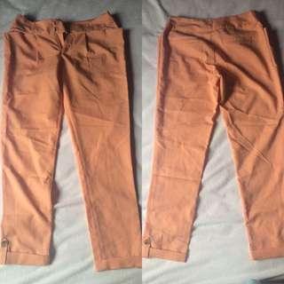 Kitschen Executive Trouser