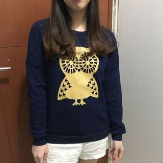 Owl Sweater ZARA