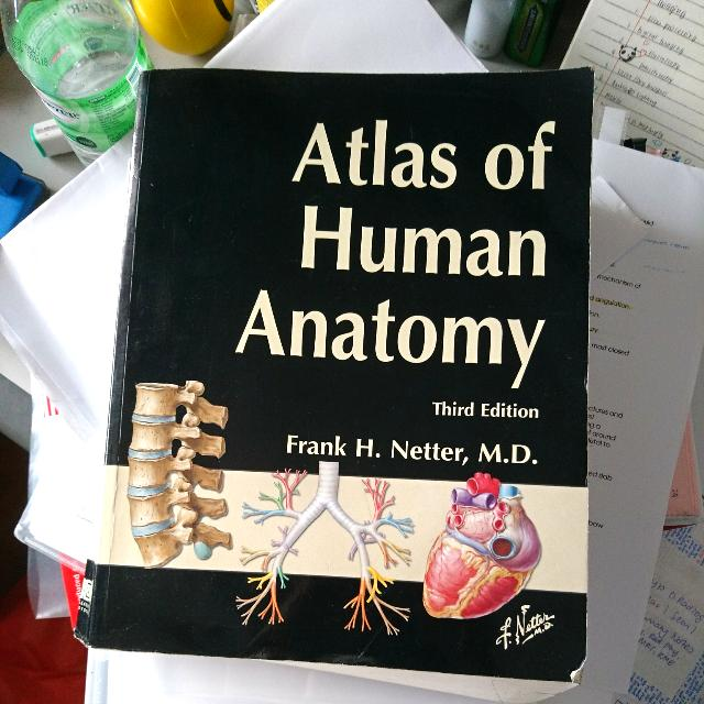 Atlas Of Human Anatomy 3rd Edition By Frank H Netter Md Books