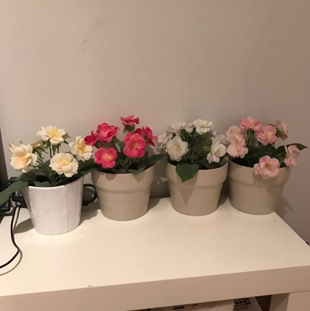 Carousell : artificial flowers in pots - startupinsights.org