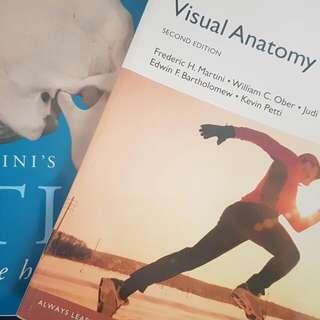 Visual Anatomy Physiology
