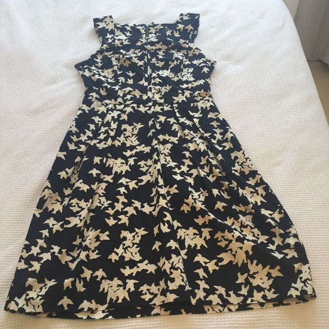 Black And Ivory Cur Bluebird Dress In Size 10