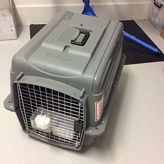 Petmate Dog/Cat Carrier