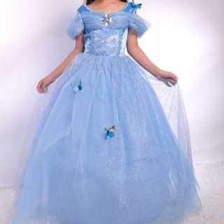Cinderella Dress/costume