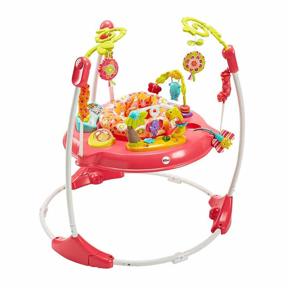 ed835af053d8 Brand New in Box Pink Petal Fisher Price Jumperoo Jumper Baby ...