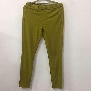 Uniqlo 經典款 芥末綠 內搭褲