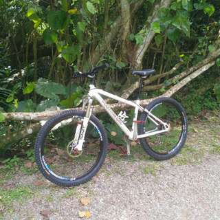 Commencal Nuts 5