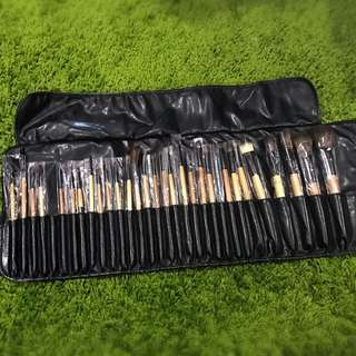 29 Piece Brush Set With Case