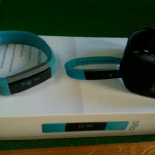 Fitbit Alta And Fitbit Surge