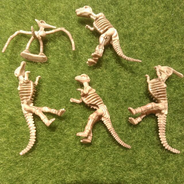 迷你恐龍化石 模型 株邏紀